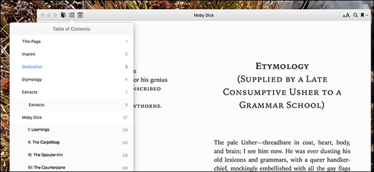 Standard-E-Books bieten gemeinfreie Downloads, die nicht hässlich sind
