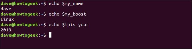 """Das """"Echo"""" Befehl zum Anzeigen der Werte von Variablen in einem Terminalfenster."""