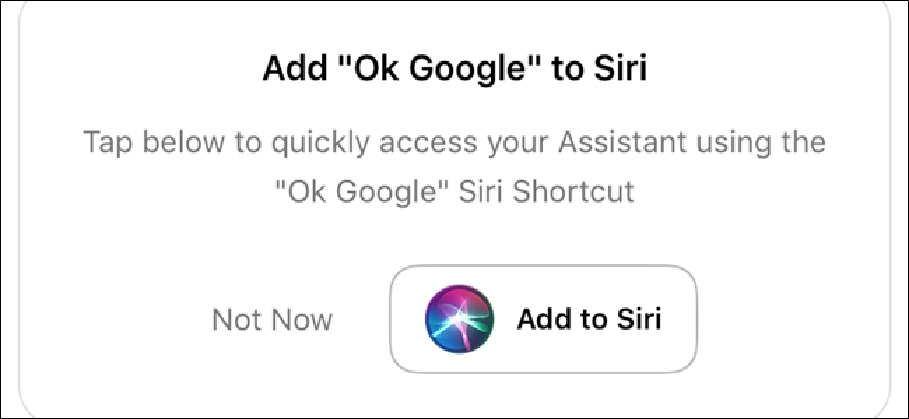 Lassen Sie Siri weniger saugen, indem Sie ihm sagen, dass er Google Assistant verwenden soll