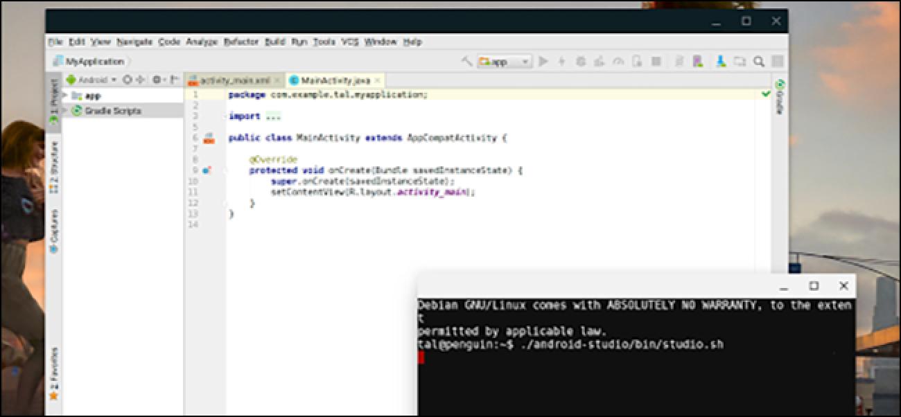 Linux-Apps kommen auf Chromebooks
