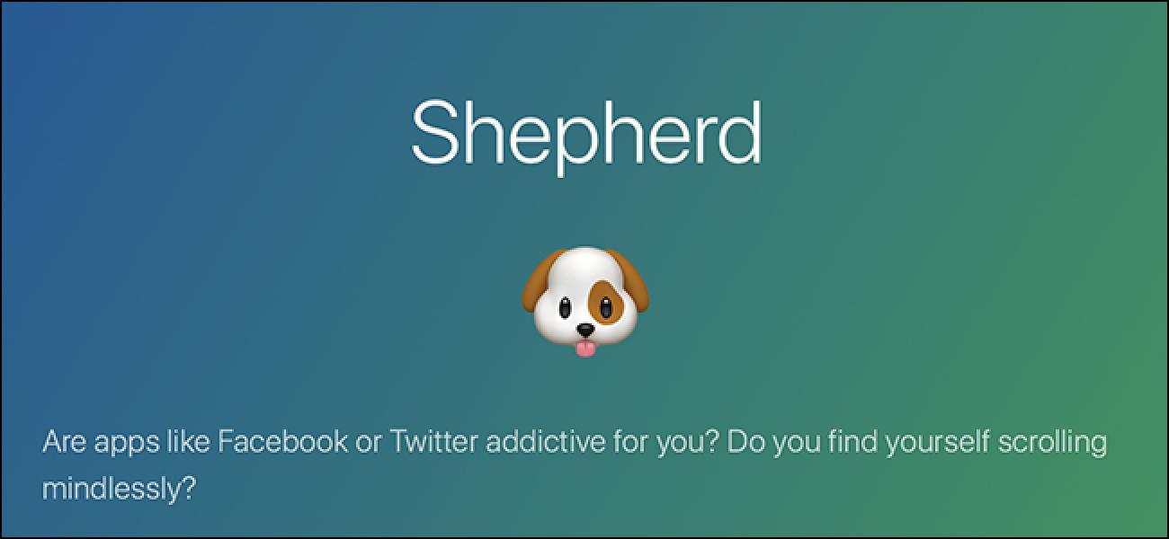 Shepherd bringt Sie dazu, etwas zu lesen, anstatt durch Facebook zu scrollen