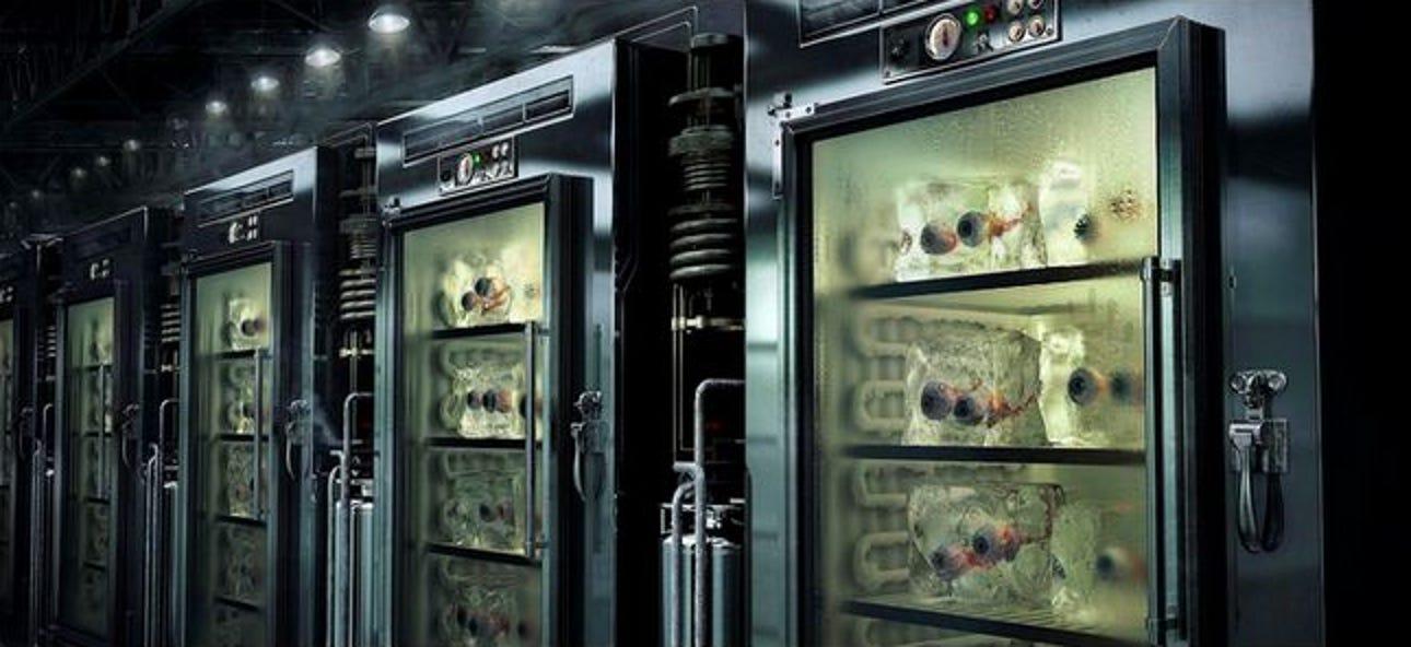 Sollten Sie Batterien im Kühlschrank aufbewahren?