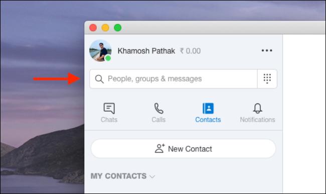 Geben Sie die Informationen eines Kontakts in das Suchfeld von Skype ein.