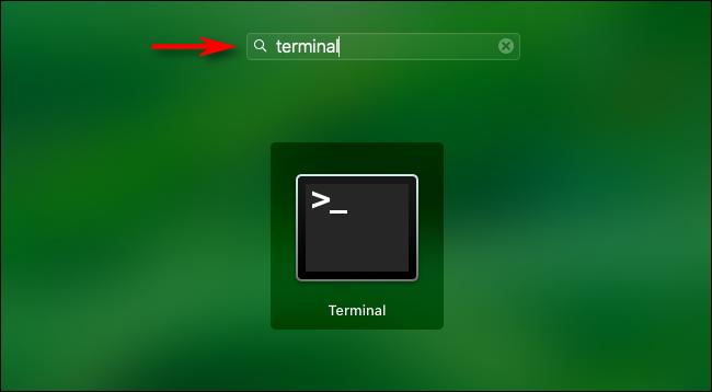 """Öffnen Sie das Launchpad und geben Sie ein """"Terminal"""" Drücken Sie dann die Eingabetaste."""