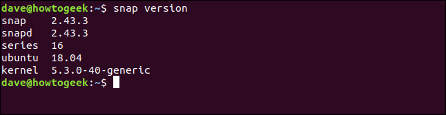 """Das """"Snap-Version"""" Befehl in einem Terminalfenster."""