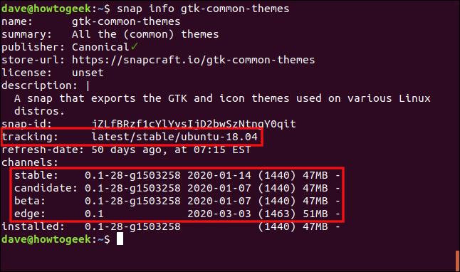 """Das """"Snap Info GTK-Common-Themes"""" Befehl in einem Terminalfenster."""