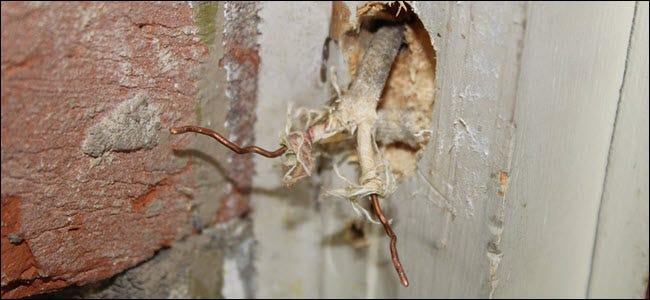 Zwei freiliegende Drähte ragen aus der Wand heraus.