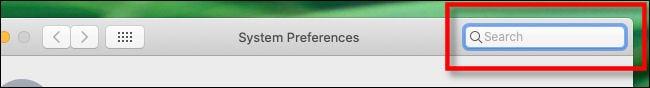 Suchleiste für Systemeinstellungen auf dem Mac