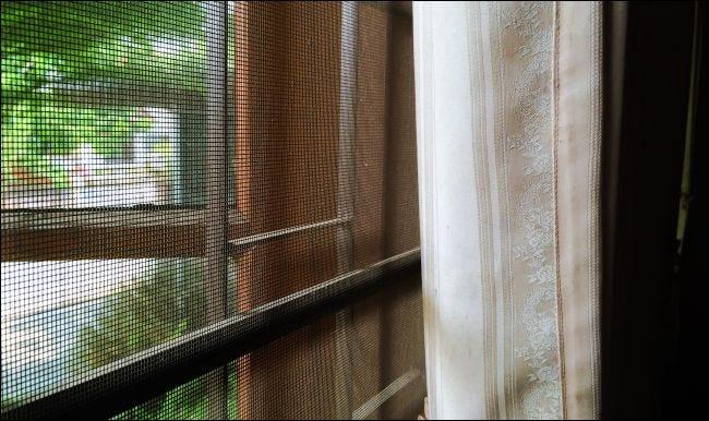 Schließen Sie oben von einem Fenster mit einem Maschendrahtgitter darüber