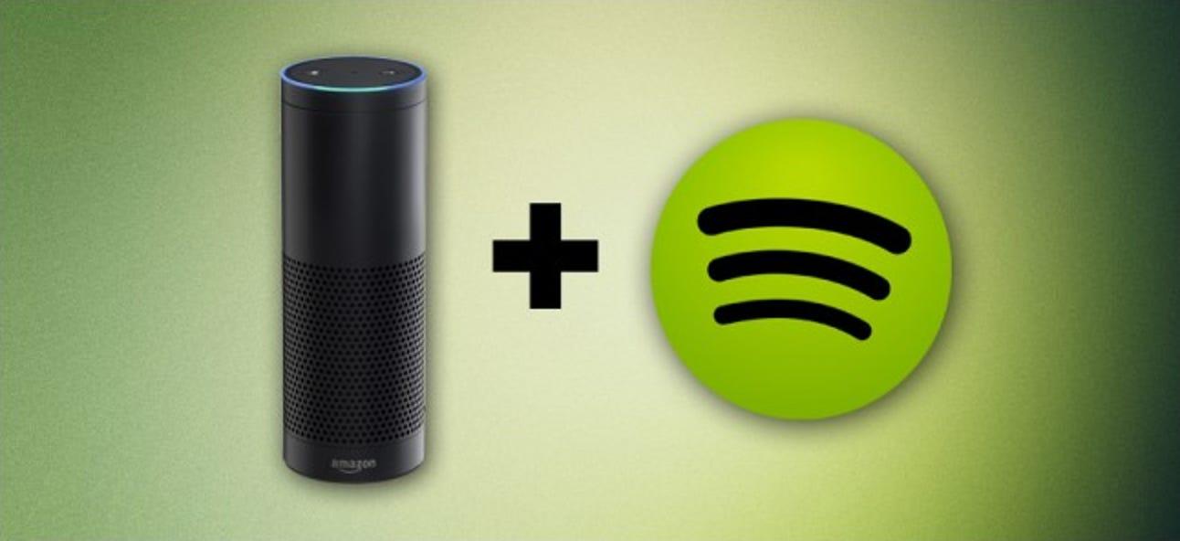 So spielen Sie Spotify-Musik auf dem Amazon Echo ab