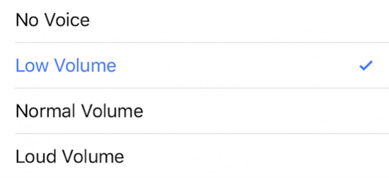 So ändern Sie die Sprachlautstärke auf Apple Maps