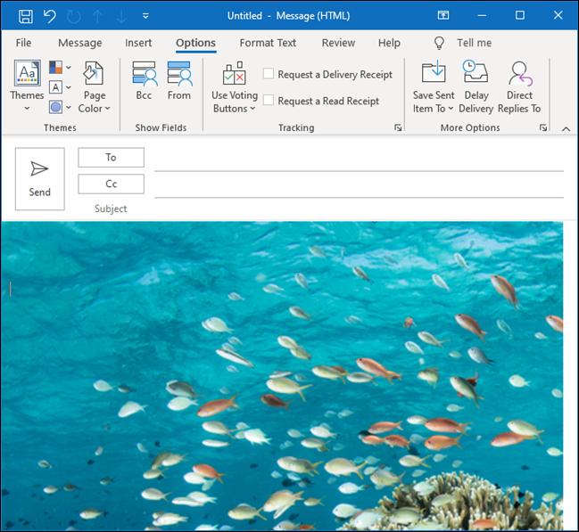 Eine Outlook-E-Mail mit einem Unterwasserbild von tropischen Fischen als Hintergrund.