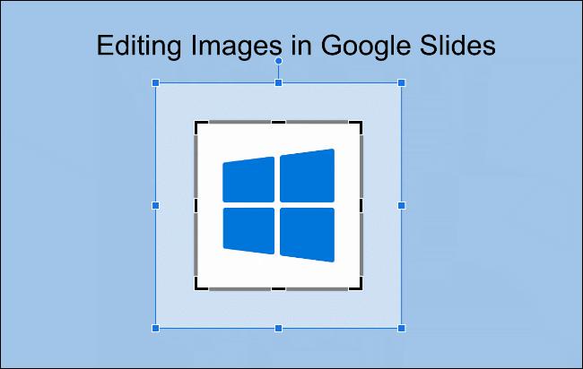 Verwenden Sie die Maus, um auszuwählen, welche Bereiche eines Bildes in Google Slides zugeschnitten werden sollen