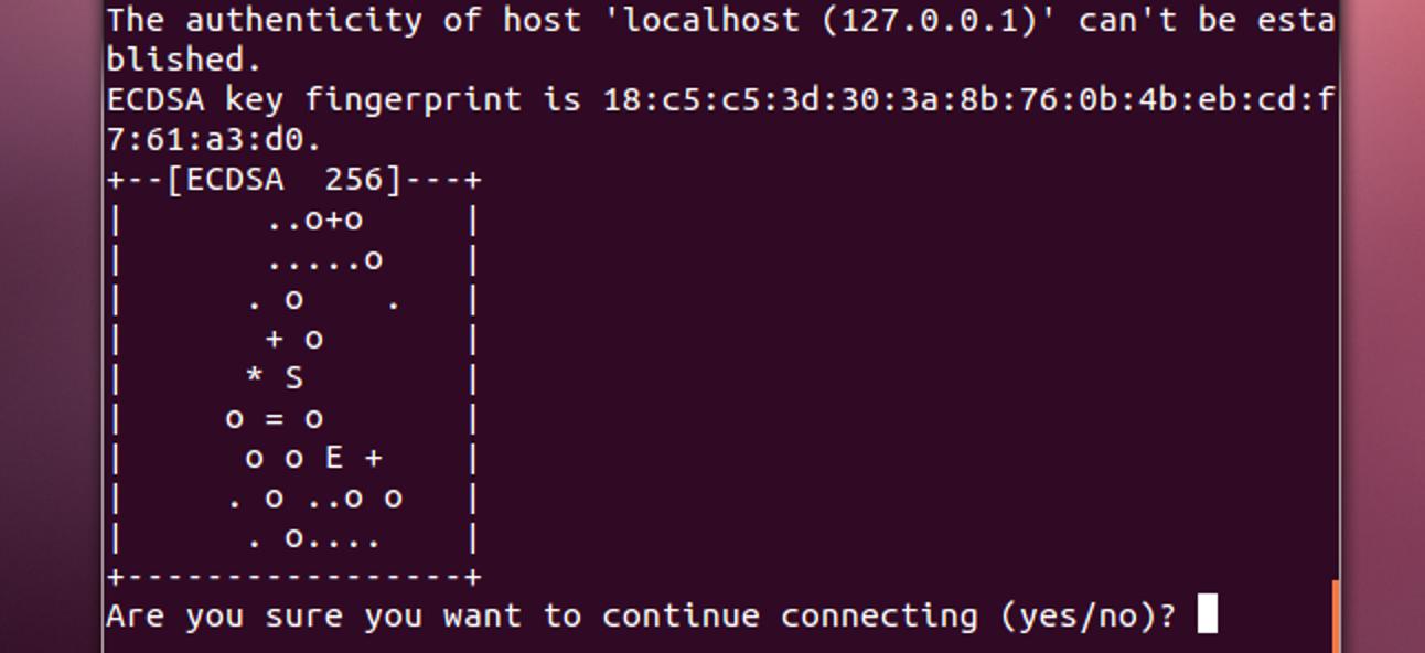 5 coole Dinge, die Sie mit einem SSH-Server tun können