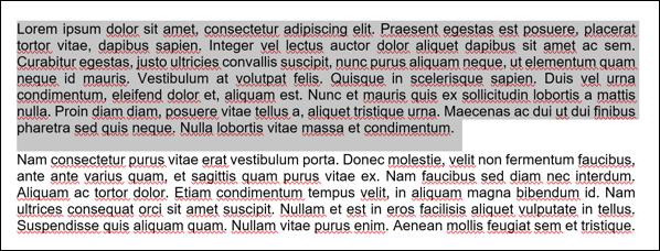 Beispieltext aus einem Microsoft Word-Dokument mit einem ausgewählten Absatz.