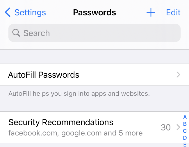 "Das ""Passwörter"" Menü in iOS 14."