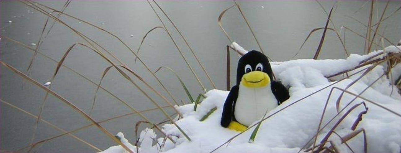 4 Möglichkeiten zur Wiederherstellung von einem abgestürzten oder eingefrorenen X-Server unter Linux