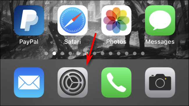 Öffnen Sie die Einstellungen auf dem iPhone